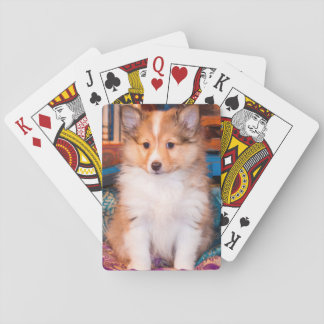 Shetland Sheepdog puppy sitting by small wagon Playing Cards