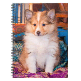 Shetland Sheepdog puppy sitting by small wagon Spiral Notebook