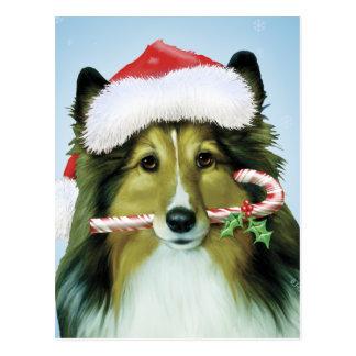Shetland Sheepdog Santa Postcard