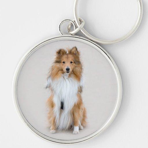 Shetland Sheepdog, sheltie cute dog photo portrait Key Chain