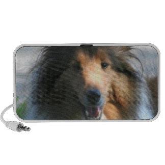 Shetland Sheepdog Speaker