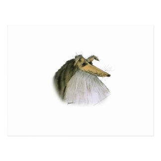 Shetland Sheepdog, tony fernandes Postcard