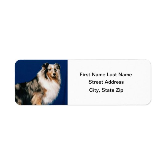Shetlie (Merle) Return Address Label
