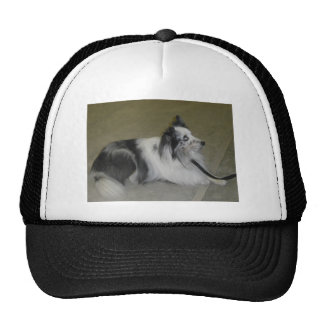 Shetlon Sheepdog Hat