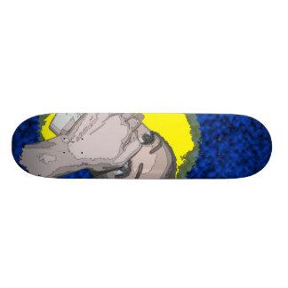 shhhhead skate decks