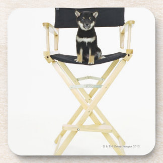 Shiba Inu dog on director's chair Coaster