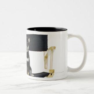Shiba Inu dog on director's chair Two-Tone Coffee Mug