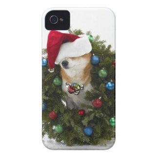 Shiba Inu dog wearing Santa hat sitting in iPhone 4 Cases