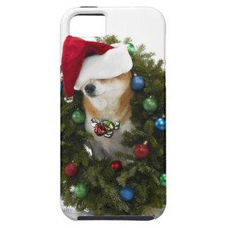 Shiba Inu dog wearing Santa hat sitting in Tough iPhone 5 Case
