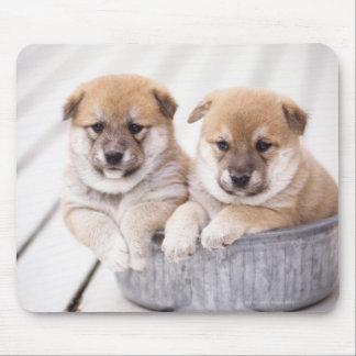 Shiba Inu puppies in aluminum tub Mouse Mat
