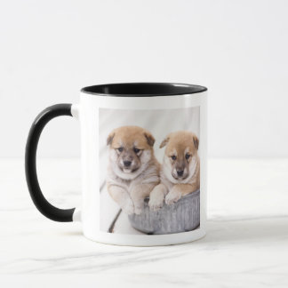 Shiba Inu puppies in aluminum tub Mug
