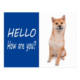 Shiba Inu Puppy Dog Greeting Post Card