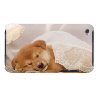 Shiba Inu puppy sleeping under a net curtain iPod Touch Cases