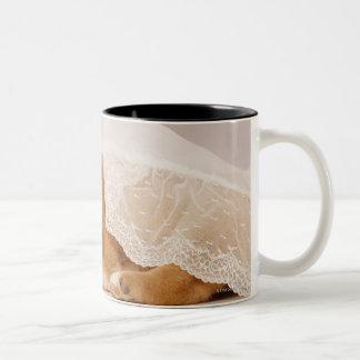 Shiba Inu puppy sleeping under a net curtain Two-Tone Coffee Mug