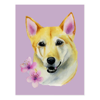 Shiba Inu with Sakura Watercolor Painting Postcard