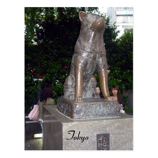 shibuya hachiko statue post card