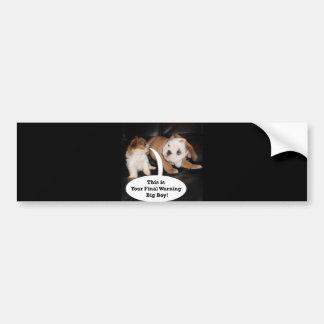 Shih Tzu and English Bulldog Puppys Bumper Sticker