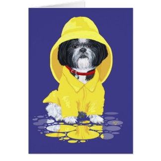 Shih Tzu April Showers Card