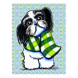 Shih Tzu B w Happy Winter Scarf Post Cards