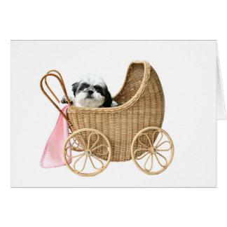 Shih Tzu baby buggy Greeting Card