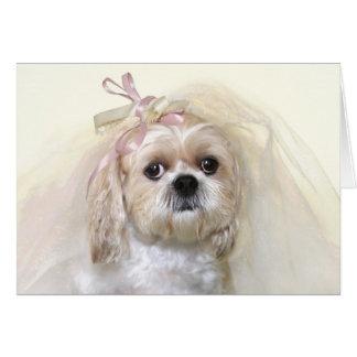 Shih Tzu Bride Greeting Card