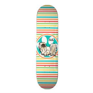 Shih Tzu; Bright Rainbow Stripes Skateboards