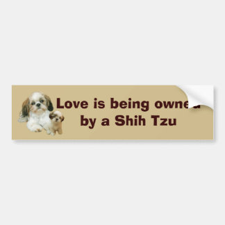 Shih Tzu Buddies Bumper Sticker