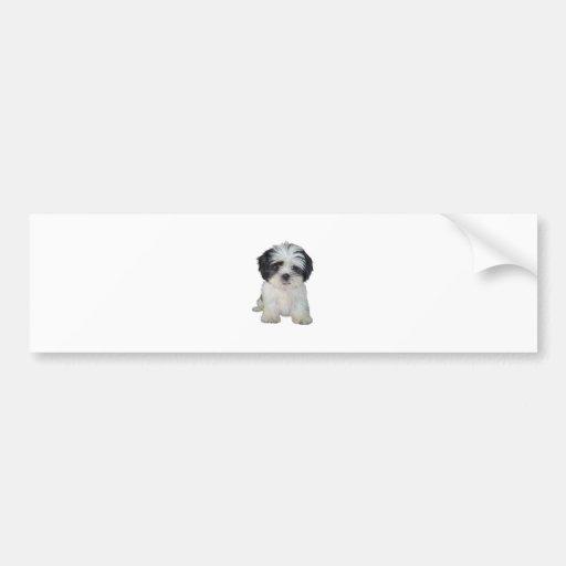 Shih Tzu (bw) - Puppy Bumper Stickers