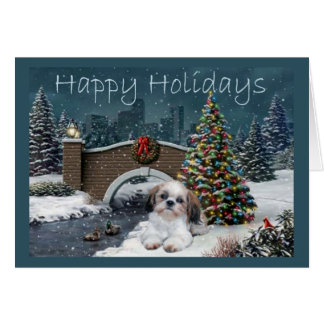 Shih Tzu Christmas Card Evening