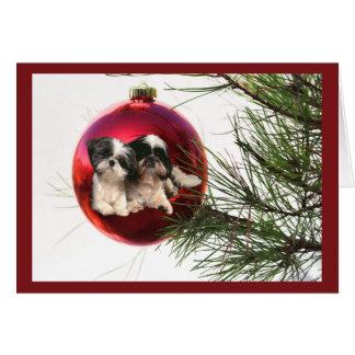 Shih Tzu Christmas Cards & Invitations | Zazzle.co.uk