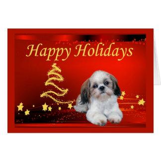 Shih Tzu Christmas Card Stars