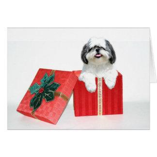 Shih Tzu Christmas gift Card