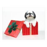 Shih Tzu Christmas gift Postcard