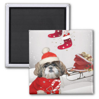 Shih Tzu Christmas magnets