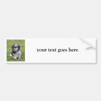 Shih Tzu custom cute photo bumper sticker