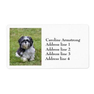 Shih Tzu custom personalized cute address labels