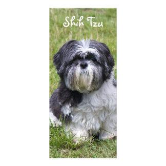 Shih Tzu dog beautiful cute photo bookmark Rack Card Design