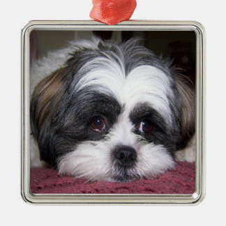 Shih Tzu Dog Christmas Ornament