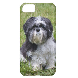 Shih Tzu dog cute photo iphone 5 case mate barely