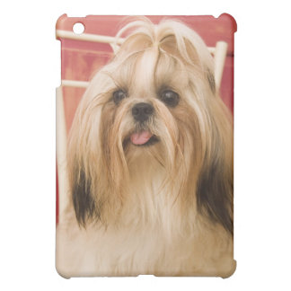 Shih-tzu dog iPad mini case