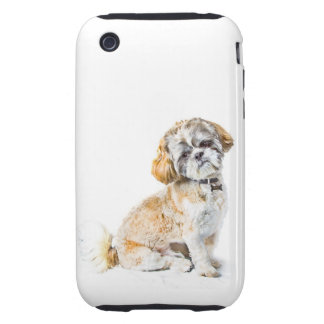 Shih Tzu Dog iPhone 3G/3GS Case Tough Tough iPhone 3 Covers