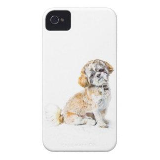 Shih Tzu Dog iPhone 4/4S ID Case iPhone 4 Cover
