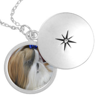 Shih Tzu Dog Round Locket Necklace
