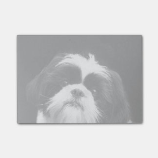 Shih Tzu dog post it notes Post-it® Notes