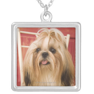 Shih-tzu dog silver plated necklace