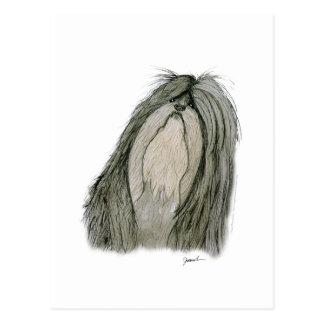 Shih Tzu dog, tony fernandes Postcard