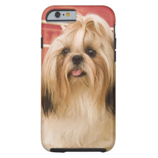 Shih-tzu dog tough iPhone 6 case