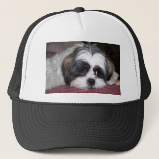 Shih Tzu Dog Trucker Hat