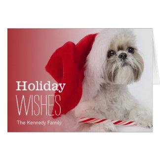 Shih Tzu dog wearing a Santa Claus hat Card