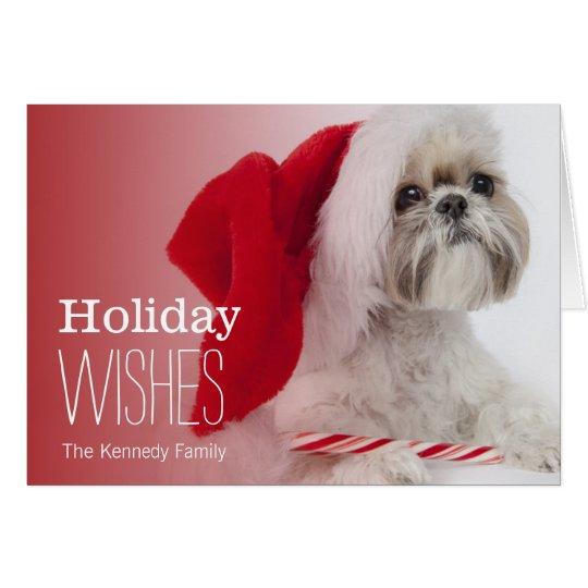 Shih Tzu dog wearing a Santa Claus hat